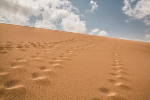 Sentiers laissés dans le sable dans le désert