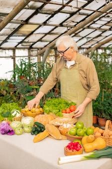 Sérieux senior man in eyeglasses debout à table en serre et sélection de légumes mûrs à vendre