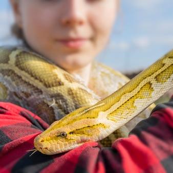 Le serpent molurus python albinos est un grand python non venimeux i
