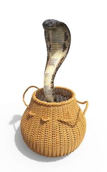 Serpent venimeux roi cobra isolé sur fond blanc dans un seau avec un tracé de détourage.