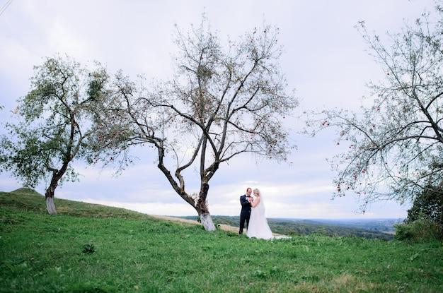 Serrant le couple de mariage se tient sous le vieil arbre sur le terrain