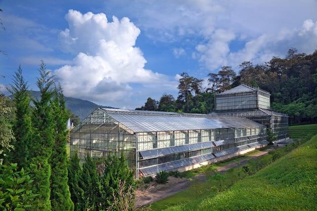 Serres pour la culture de plantes, sur fond de ciel et de nuages.