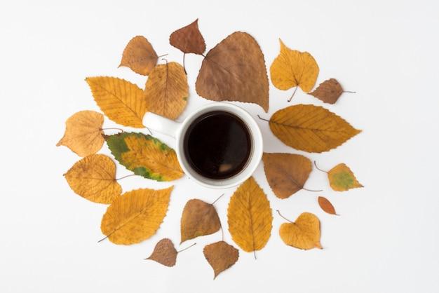 Sertie de feuilles séchées et d'une tasse de café