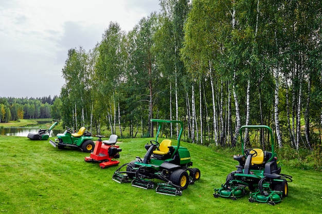 Service professionnel et disposition de divers revêtements de pelouse