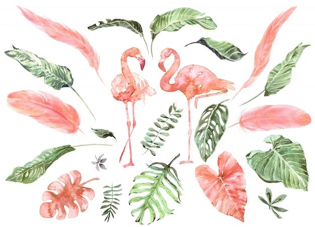 Set aquarelle de plumes de flamant rose et de feuilles exotiques tropicales