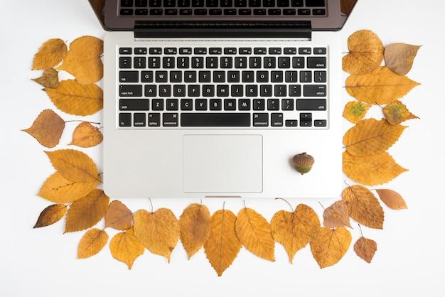Set d'automne avec ordinateur portable et gland