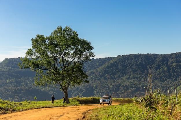 Seul arbre et une voiture en cours d'exécution sur un chemin de terre en montagne