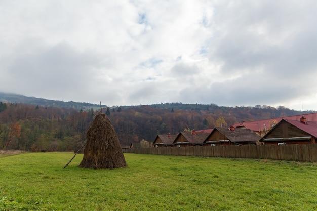 Seule botte de foin près de la forêt d'automne par temps nuageux