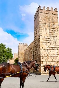 Séville real alcazar fort sevilla andalousie