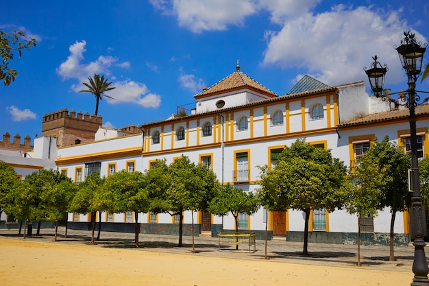 Séville real alcazar de séville patio de banderas