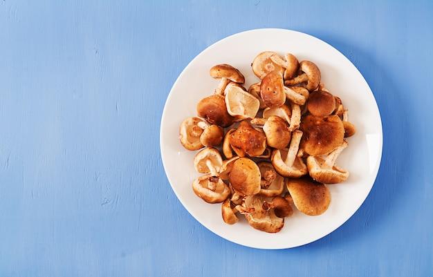 Shiitake aux champignons frais crus sur fond bleu. vue de dessus. pose à plat