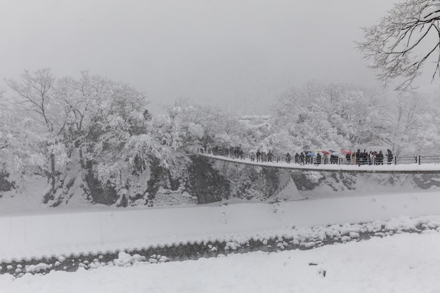 Montagne de neige vecteurs et photos gratuites - Photos de neige gratuites ...