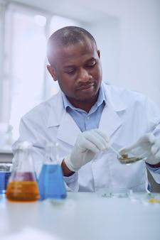 Si intelligent. chercheur afro-américain intelligent travaillant avec des graines tout en effectuant un nouveau test