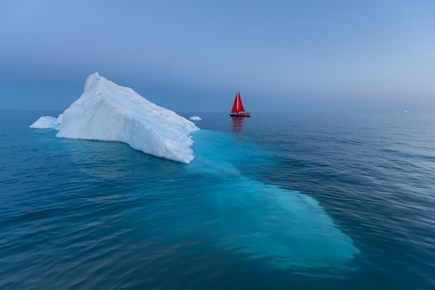Sial rouge et icebergs au groenland