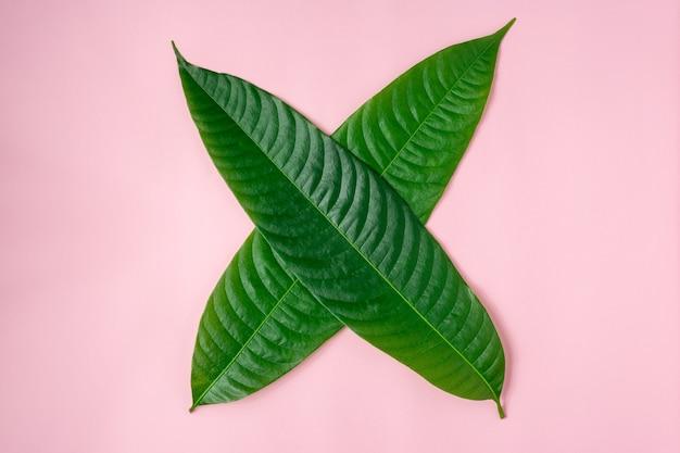 Signe de croix fait de feuilles vertes.