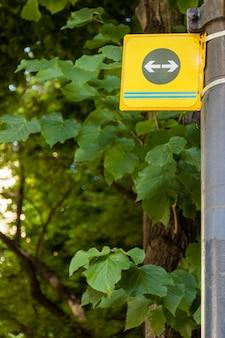 Signe de flèche dans la forêt