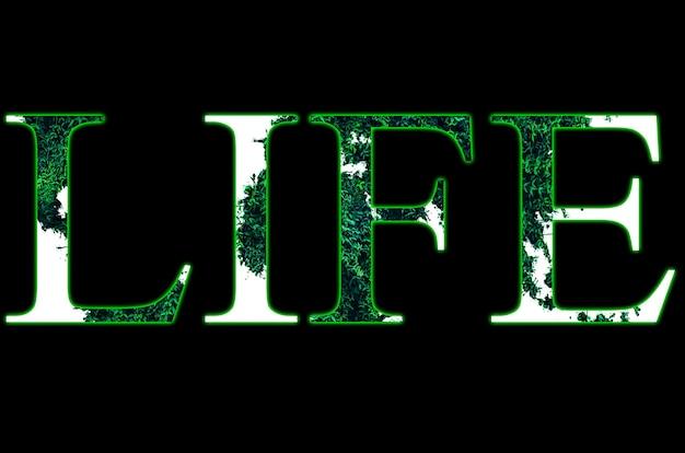 Signe de mot de vie de l'herbe verte. tendances écologiques. protection de l'environnement des plantes et des arbres. isolé sur fond noir.