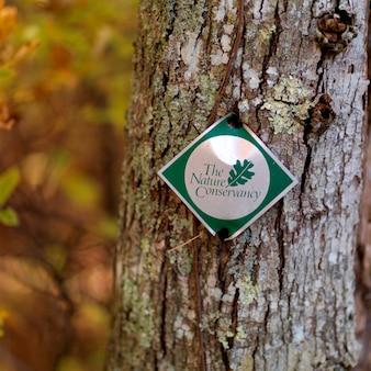 Signe posté sur un tronc d'arbre, les hamptons, new york