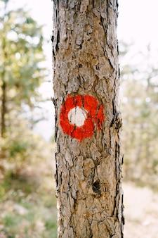 Signe de randonnée à point rouge sur un arbre cercle rouge avec un point blanc panneaux de direction du sentier de randonnée et