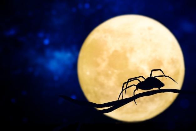 Silhouette d'araignée sur une pleine lune