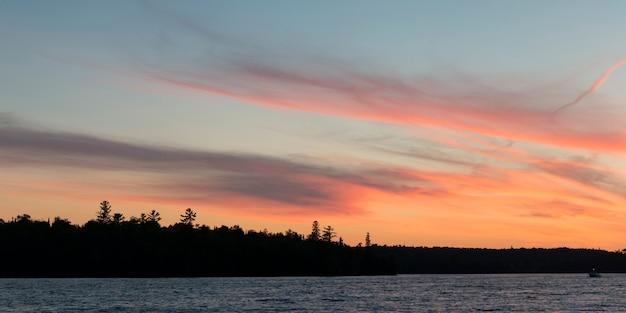 Silhouette d'arbres au bord du lac, kenora, lac des bois, ontario, canada