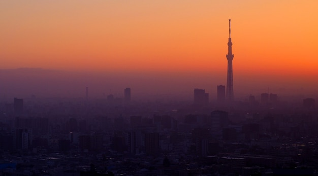 Silhouette de bâtiment d'arbre de ciel de tokyo et ville de paysage au coucher du soleil du soir.