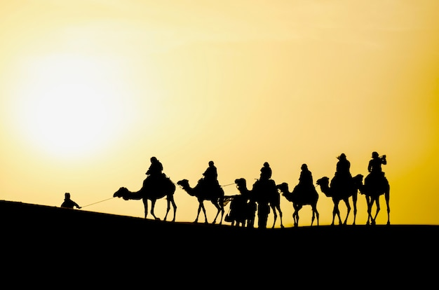 Silhouette d'une caravane de chameaux dans le désert du sahara au lever du soleil