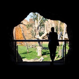 Une silhouette d'une femme dans la grotte du zoo