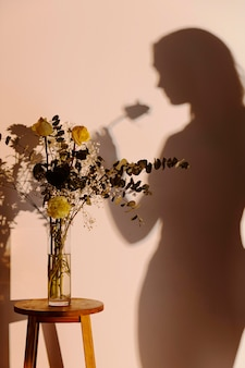 Silhouette de femme gracieuse à la maison