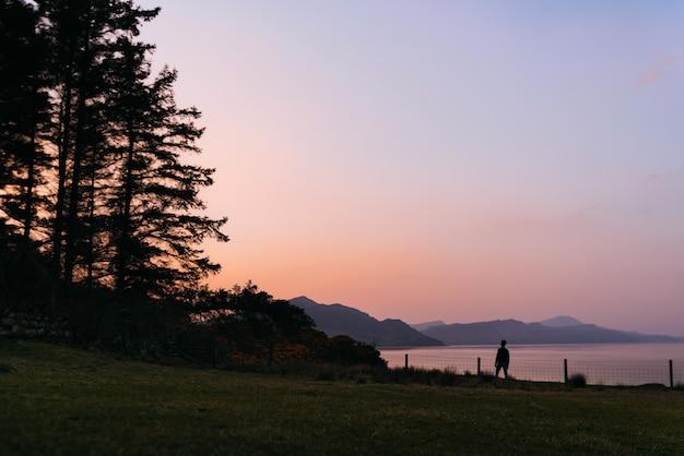 Silhouette de l'homme méconnaissable debout sur l'herbe sur un beau paysage avec des arbres d'une forêt et des montagnes violettes