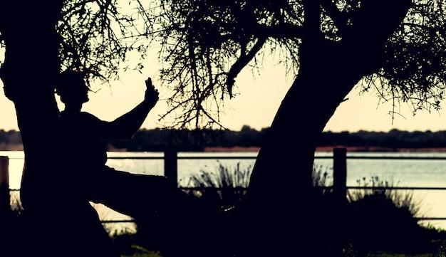 Silhouette homme utilisant un smartphone pour selfie dans un arbre mort