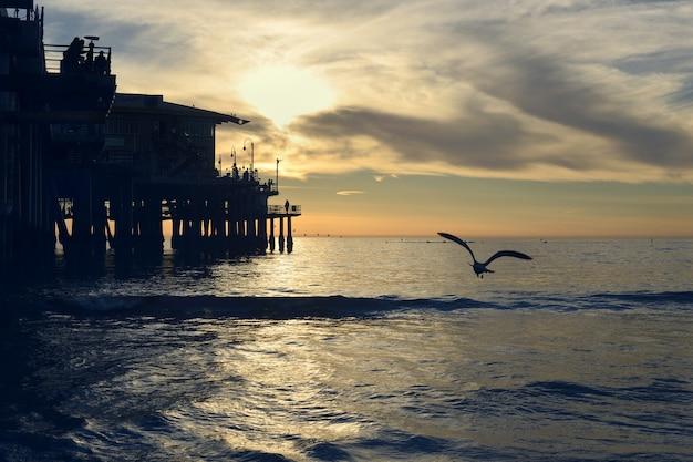 Silhouette d'un oiseau volant au-dessus de la belle mer près du quai en bois pendant le coucher du soleil