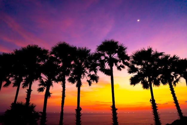 Silhouette palmier avec beau ciel coucher de soleil crépuscule