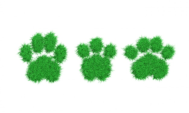 Silhouette de pied animal impression d'herbe verte illustration 3d
