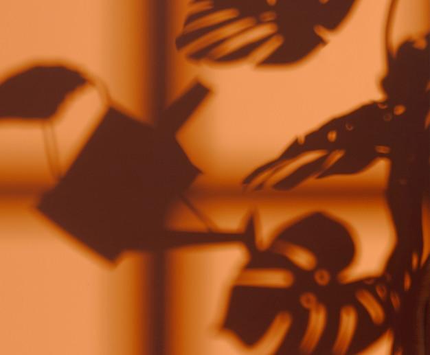 Silhouette de plante d'intérieur sur le mur