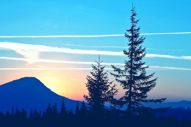 Silhouettes d'arbres dans les montagnes du lever du soleil. nature et paysages incroyables
