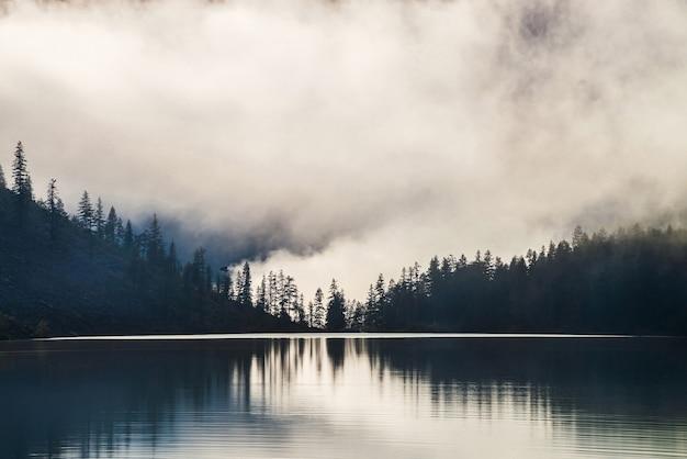 Silhouettes d'arbres pointus à flanc de colline le long du lac de montagne dans un brouillard dense.
