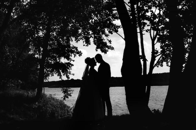 Silhouettes d'un couple d'amoureux au coucher du soleil dans la nature