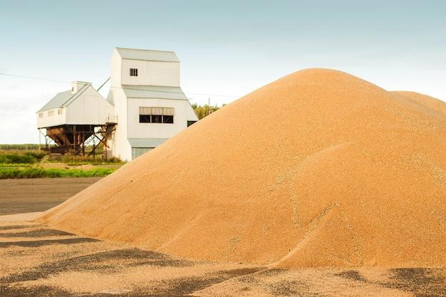 Silos de stockage de grain. grenier avec équipement mécanique pour la réception, le nettoyage