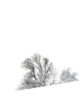 Simplicité en noir et blanc