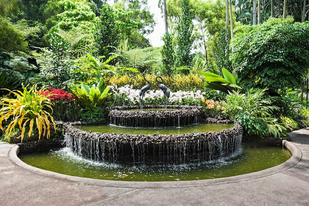Singapour - 17 octobre 2014 : le national orchid garden, situé dans les jardins botaniques de singapour.