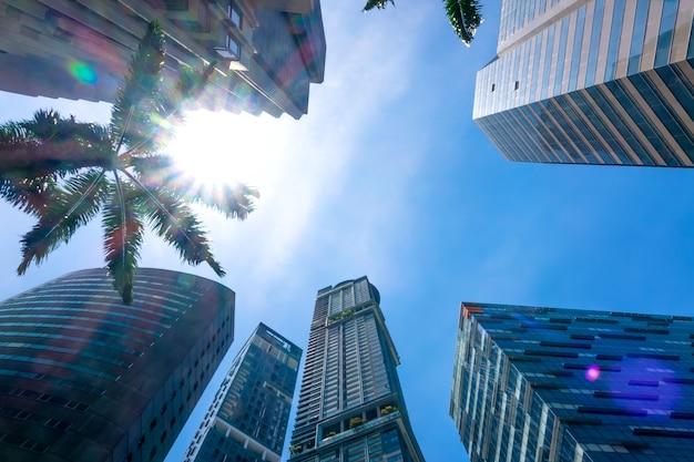 Singapour. gratte-ciel de bureaux modernes et rayons du soleil à travers les feuilles vertes des palmiers