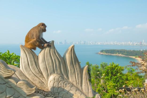 Singe dans le temple de linh ung assis sur un rocher avec la ville et la plage de danang