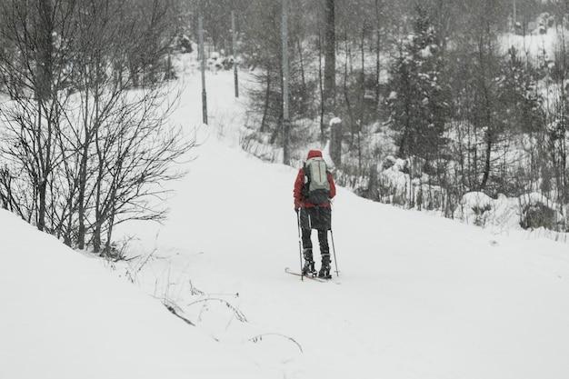 Ski touristique dans la forêt