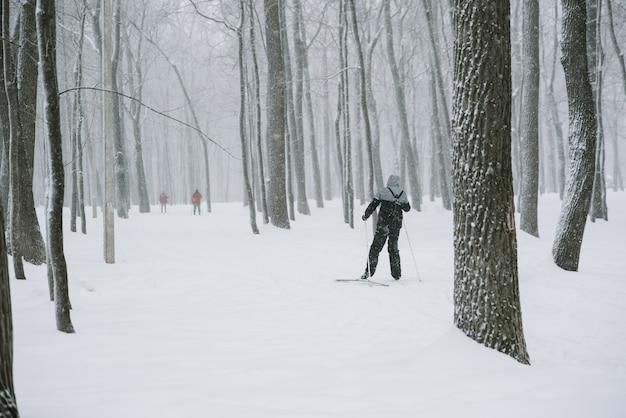 Un skieur dans une forêt d'hiver lors d'une chute de neige