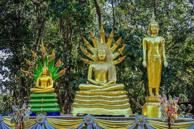 Skywalk thaïlandais dans le district de sangkhom, rivière mékong, province de nong khai, thaïlande