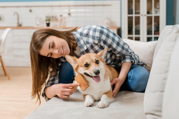 Smiley femme brossant son chien sur le canapé