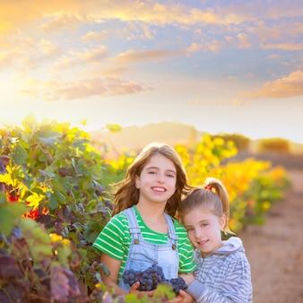 Soeur enfant girs agriculteur dans les vendanges du vignoble en automne méditerranéen