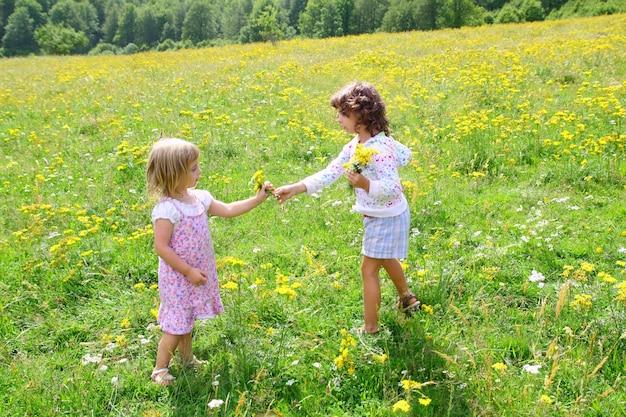 Soeur, filles, dans, pré, jouer, à, fleurs printemps