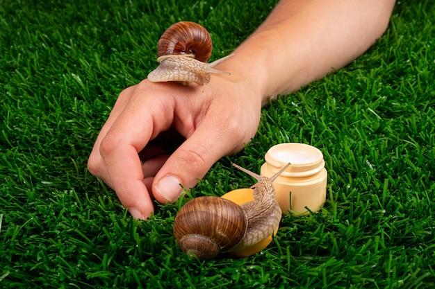 Soins de la peau des mains de beauté, cosmétiques à la mucine d'escargot.